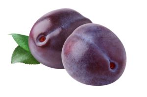 plum-png-images